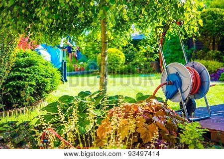 Sunny Backyard Garden