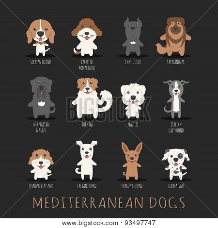 Set Of Mediterranean Dogs