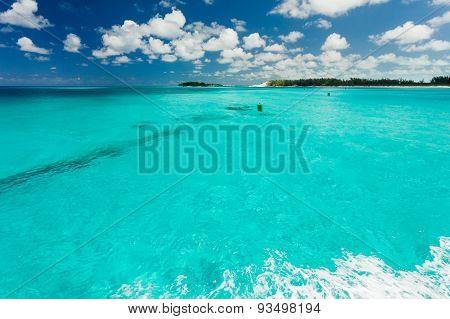 Clear Carribean Water