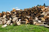 pic of firewood  - sectional drawing stack of firewood on the green grass and blue sky on the background - JPG