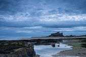 picture of tide  - Rocks leading to Bamburgh Castle from the beach at low tide in the blue hour before sunrise - JPG