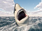 image of great white shark  - Computer generated 3D illustration with a Great White Shark - JPG