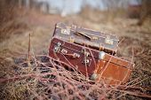 picture of old suitcase  - Two old vintage suitcases lie forgotten in a faded grass - JPG