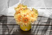 picture of pitcher  - Beautiful chrysanthemums in pitcher on fabric background - JPG