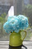 foto of pitcher  - Beautiful flowers in pitcher on windowsill - JPG