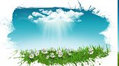 image of rain cloud  - 3D render of daisies in grass with a sunny rain cloud with a grunge style splat effect - JPG