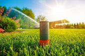 image of sprinkler  - Lawn Sprinkler in Action - JPG