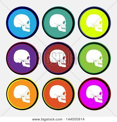 Skull Icon Sign. Nine Multi Colored Round Buttons. Vector