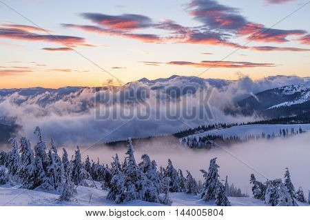 Fantastic winter landscape. The Dramatic overcast sky