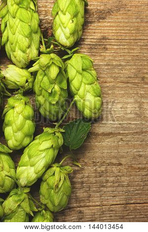 Fresh green hops on a wooden table closeup. Vintage toned