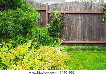 Wooden Fence Near Fresh Green Lawn