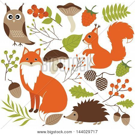 Vector woodland animals set with fox owl hedgehog and squirrel
