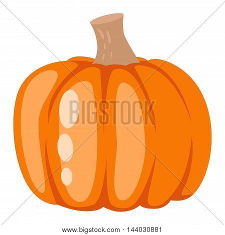 Autumn pumpkin element design, pumpkins oriental bittersweet vector illustration. Pumpkin icon vegetable. Harvest symbol season decoration.