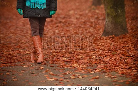 Girl Is Walking Through The Park.