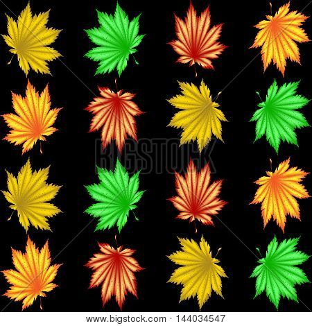 The pattern of autumn leaves. Red yellow orange green maple leaf or fern for background or pattern on a black background.