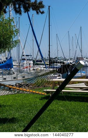 Yachts Moored At Marina At Beautiful Sunny Day And Hammock