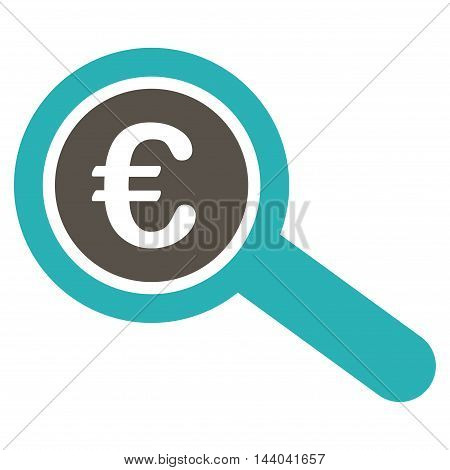 Euro Financial Audit icon. Glyph style is bicolor flat iconic symbol, grey and cyan colors, white background.