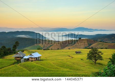 Terraced Paddy Field in Mae-Jam Village Chiang Mai Province Thailand