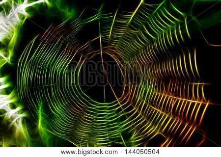 Abstract Spider Web