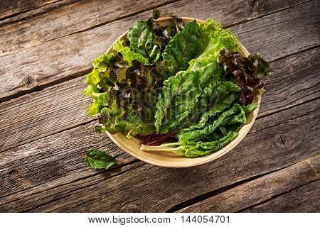 Fresh green salad mix. Culinary background with fresh salad herbs such as chard, lettuce, beet leaves in a bowl on the table. May be used as background