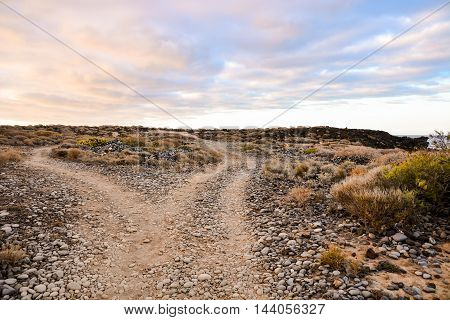 Dirt Road Desert