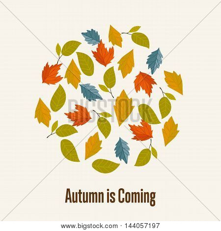 Autumn leaves fall on background vector illustration. Autumn leaves concept. Different autumn leaves. Abstract leaves.