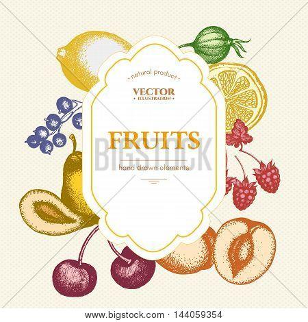Fruits and berries vintage card design ink sketch cherries peaches pears currants gooseberries vector
