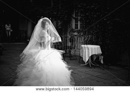Young Brunette Bride Under Veil, Black And White Portrait
