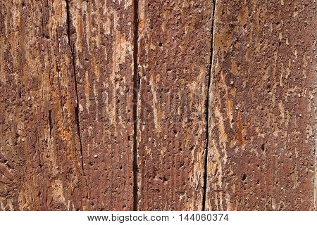 The picture was taken in Spain in the ancient city of Tarragona. The picture shows the structure of the old boards that are part of the doors in the old part of the city.