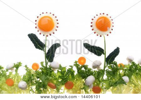 eggs in salad