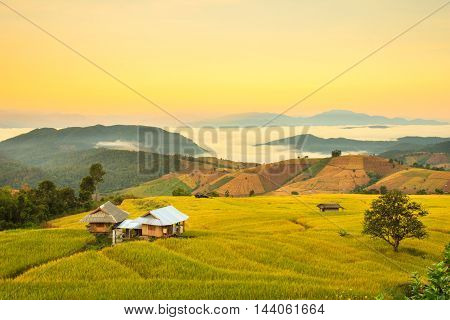 Sunrise at Terraced Paddy Field in Mae-Jam Village Chiang Mai Province Thailand