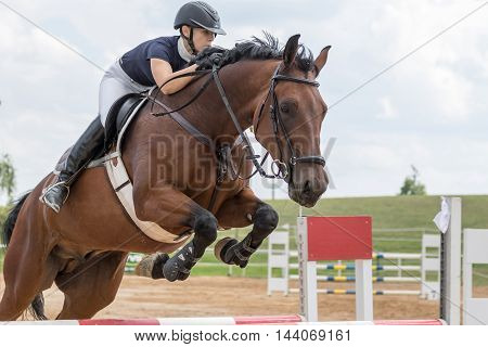 SVEBOHOV CZECH REPUBLIC - AUG 20: Closeup view of horsewoman jumping over obstacle at