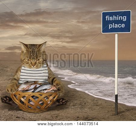 A cat fisher sits beside a basket full of fish on the beach.