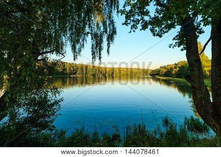 River With Birch At Foreground