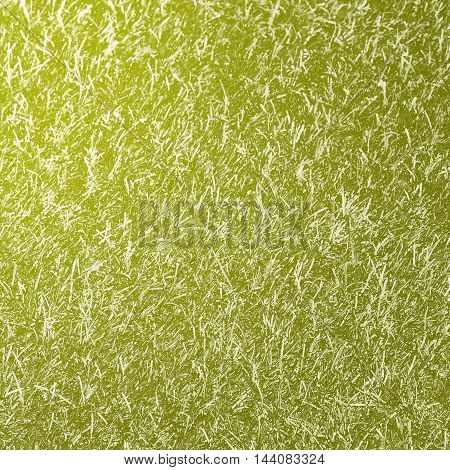Abstract creative background from grass with filtered color.