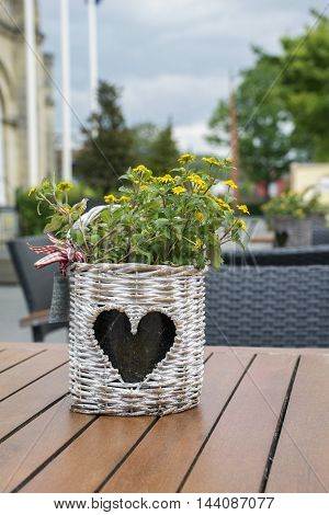 One wicker flowerpot with heart-shape pattern with yellow flowers is standing on the table in the street restaurant