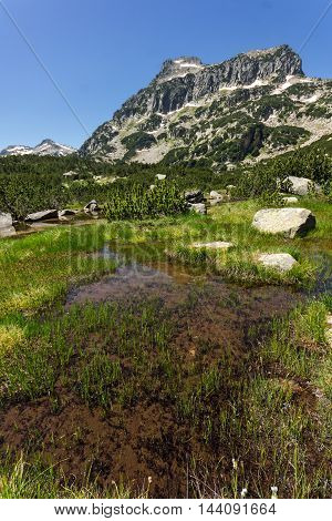 Bulgaria, Bansko, Dobrinishte, Pirin, Pirin Mountain, mountain, landscape, Panorama, rocks, clouds, Recreation, Tourism, Water, Nature, Trail, Route, outdoor, green, travel, view, destination, sunny, scenery, grass, sun, mountaineering, background, hiking