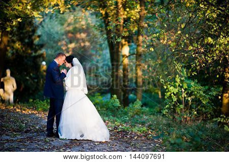 Young Stylish Wedding Couple At Magestic Wood