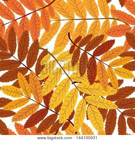 seamless pattern with yellow and red leaves on a white background