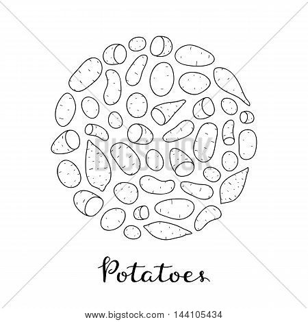 Different potato varieties composed in circle shape with lettering on white background. Hand drawn outline illustration.