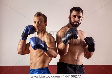 Muscular boxers in boxing gloves are ready for fight.