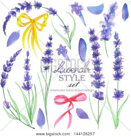 Set, collection of the isolated floral lavender elements and decoration bows, hand drawn in a watercolor on a white background