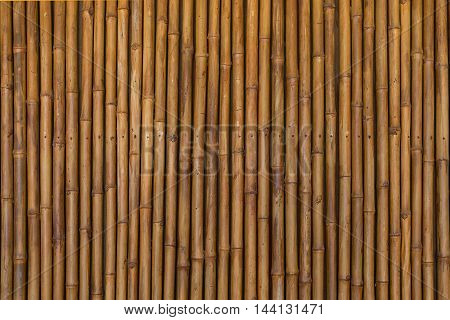 this is a dry bamboo pattern background for wall