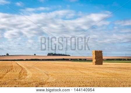 View of harvested grain field on a sunny morning in Wiltshire England. Copy space in sky.