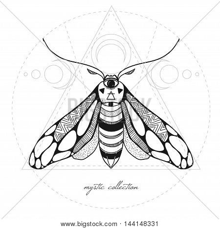 mystic illustration with moth and sacred geometry, vector illustration with butterfly isolated on white