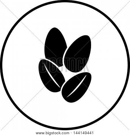 peanuts symbol