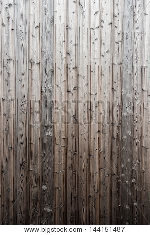 Pine Wood Plank Texture Background