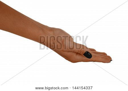Palm up holding something beautiful woman's skin black manicure. Isolated on white background.