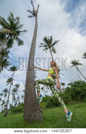 Bottom view of young pretty blonde happy female wearing exercise clothing stretching leaning against palm tree during beautiful summer day over blue sky