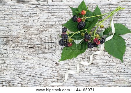 Bunch of black raspberries (Rubus occidentalis) and white ribbon on the old wooden background with space for text